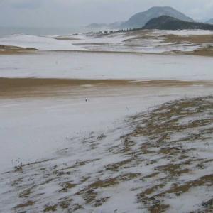 雪の鳥取砂丘・冬の日本海・らっきょう畑