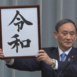 菅総理 あまり変なこと言わないでください