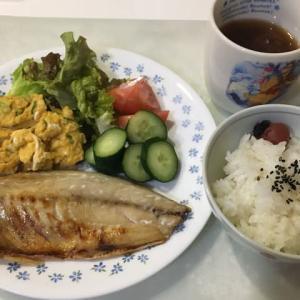 3/30 おひとり様のあじの干物定食、志村けんさんのこと、息子猫