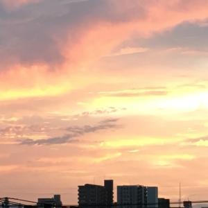 8/9(月)&8/10(火) 野暮用に蛾にお盆に(笑)