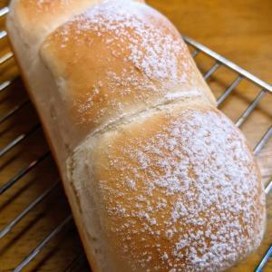 またまたお家DEパン作り〜