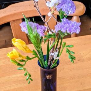 春が届きました!お花の定期便