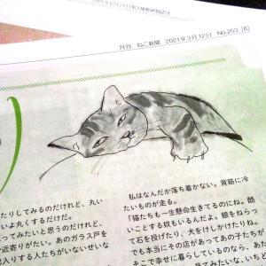 ねこ新聞のイラスト