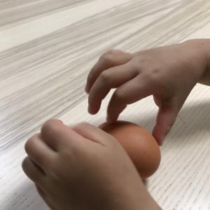 ゆで卵と生卵をどう見分ける?