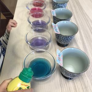 紫キャベツでカラフル色水実験?
