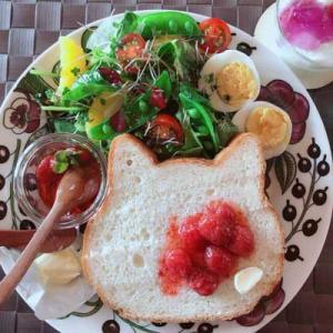 ねこねこ食パンの朝。。。