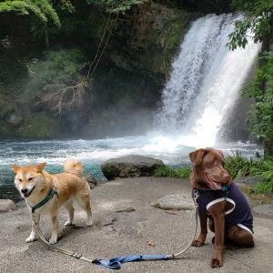 山の中のCafe記事出来ました~滝散歩もね~