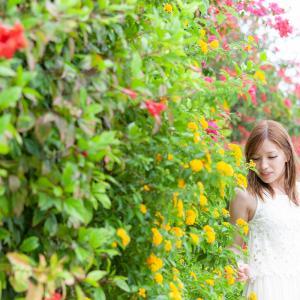 ■竹富島■ 写真映えするフォトジェニック花ポイントをご紹介