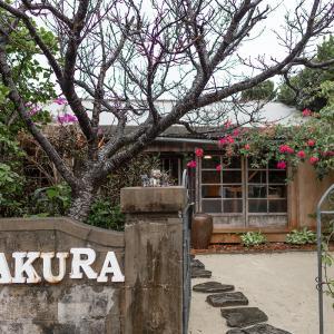 ■SAKURA 与那国島■ ここで暮らしたくなる日本最西端の島にあるステキすぎる宿