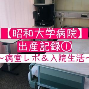 昭和大学病院での出産記録①病室レポと入院生活の感想