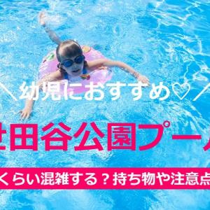 世田谷公園プールは幼児におすすめ♡混雑レポ&気を付けたい注意点