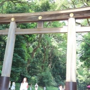 明治神宮は菖蒲がキレイな季節。御朱印もいただいてきました。