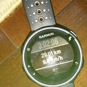 29+1 km走