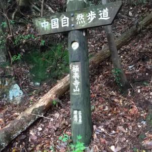 親子登山③とスイッチ問題その後  追記あり