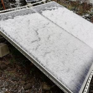 パネルに雪が・・・・(^_^;)