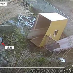 強風で犬小屋が吹っ飛んだ!【DIYで犬小屋を作る(3)】