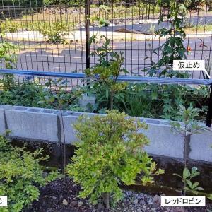 フェンスを作る【DIY】