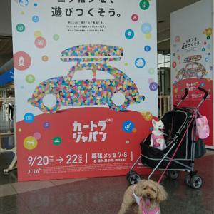 カートラジャパン2019に行ってきました♪