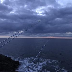 巨マゾイ爆釣に備え、投げリール3個購入 20191115