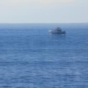 大海の一滴