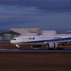 着陸してきた ANA「心をひとつに!! 行こう2020」|夕暮れ時