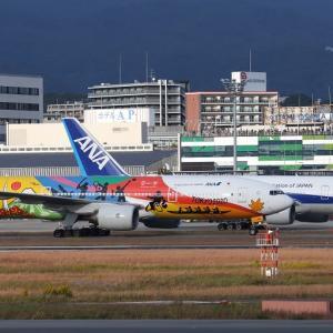 ぉ! ANA「HELLO 2020 JET」が一般色と...|この空港の呼ばれ方