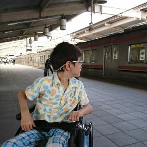 電車でゴー!!!