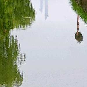 葛西用水・相西橋川面