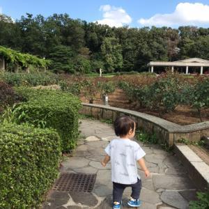 神代植物公園散策