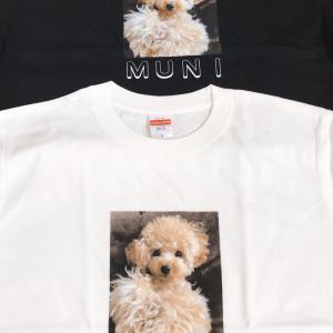 オリジナルTシャツの販売 始めました