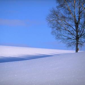 冬に聴きたい音楽教えて!「ペチカ」「冬の星座」