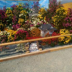秋の一日、小田原城址公園 菊花展に遊ぶ