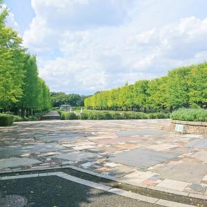 国営昭和記念公園♪
