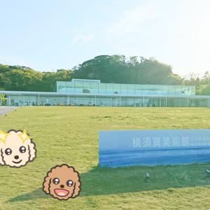 横須賀美術館♪