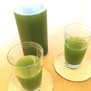 水出し緑茶の美味しいいれ方