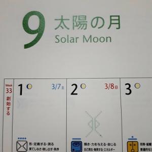 『太陽の月』が始まりました。 (13の月の暦)