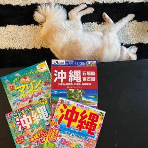 夏休み2020 沖縄旅行 計画編①