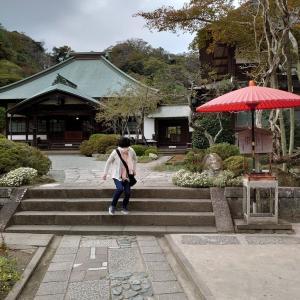 海蔵寺に出かけて来ました。