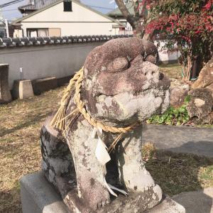 八幡神社(時津町)なんと可愛い狛犬♡勝負の神様を祀る神社