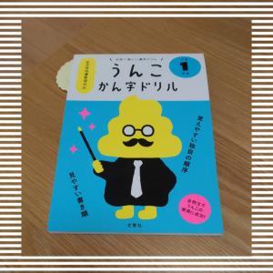 小学1年生 漢字の復習は、うんこドリルで。