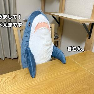 イケアのサメ太郎がやってきた