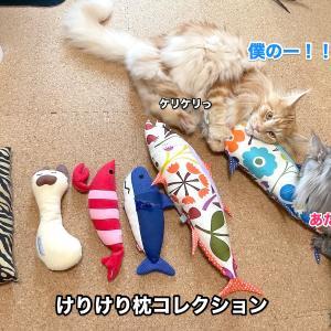 おもちゃ断捨離&けりけり枕コレクション