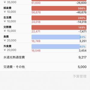 【家計簿】2020年1月