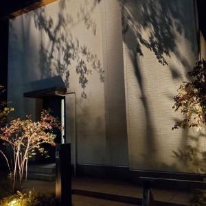 【外観】外壁をライトで飾る