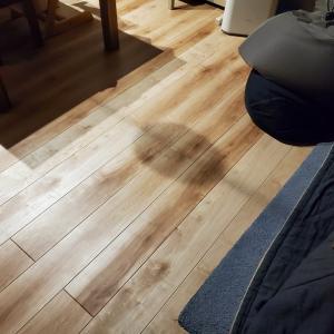 【不具合】リビングのど真ん中の床がきしむ