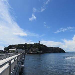 江ノ島で出会ったメディスンアニマル