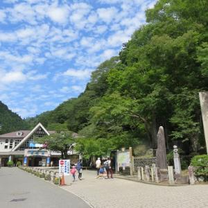 夏至の日 その①(高尾山)