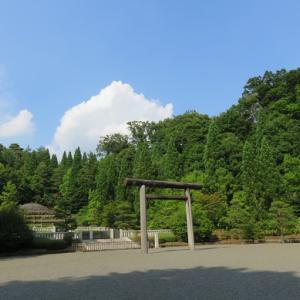 夏至の日 その②(武蔵陵墓地)