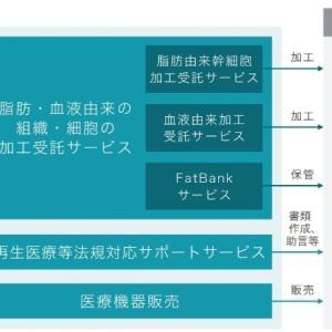 【仮条件とBBスタンス】セルソース(4880)