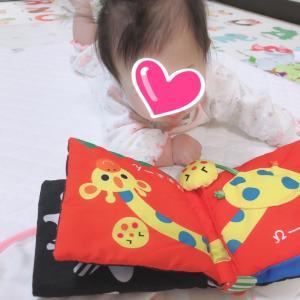 【4m13d】4ヶ月の娘が大好きなおもちゃ